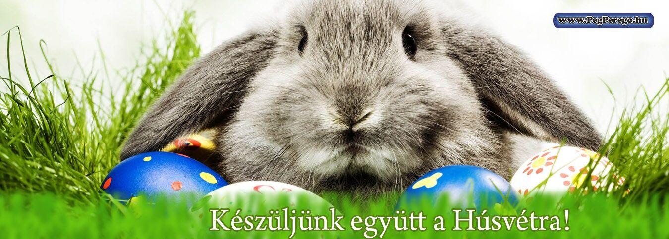 Húsvét készülődés